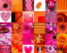 Free pink and orange photostream phone wallpaper by lolo94