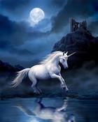 moonlight uni.jpg
