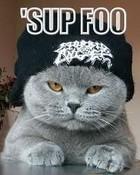 sup foo