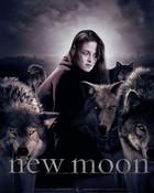 new-moon-movie.jpg