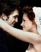edward and bella wedding fun-jpg.jpeg