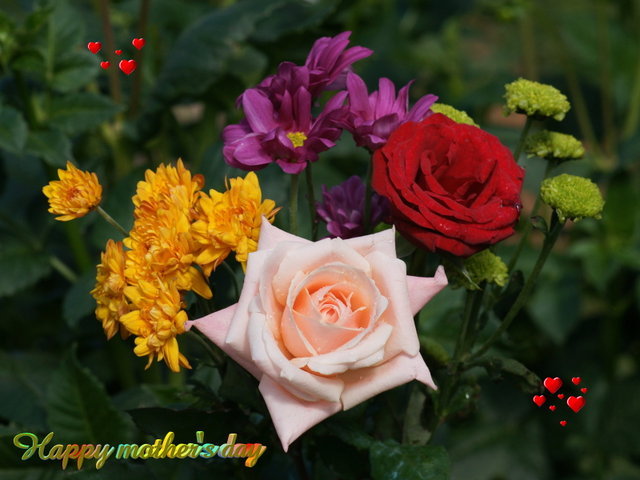 Free mothers-day-wallpaper-dsc00531g1-wp.jpg phone wallpaper by twifranny