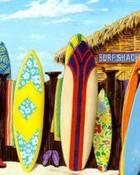 scott-westmoreland-surf-shack.jpg