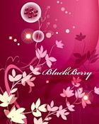 PinkBB2-1.jpg