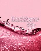PinkWater1.jpg