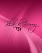 PinkBB005.jpg