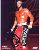 g_best-of-macho-man-randy-savage-in-wcw-13-discs-free-postage-81d11.jpg