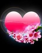 ws_Pink_Heart_1152x864.jpg
