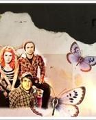 Paramore_wallpaper_by_Popstudios.jp.jpg wallpaper 1