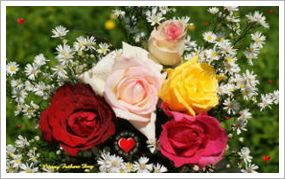 Free fathers-day-roses-dsc02889-ws.jpg.c.jpg phone wallpaper by twifranny
