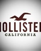 hollister-logo-1.jpg