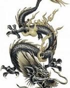 Angry Dragon.jpg