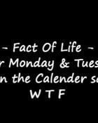 fact of life.jpg