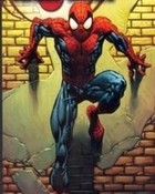 Spider on the Wall.jpg wallpaper 1