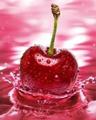 Sweet_Cherry.jpg