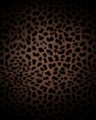 sexy-leopard.jpg