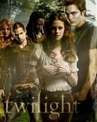 The-Twilight-Saga-twilight-series-6972752-240-320.jpg wallpaper 1