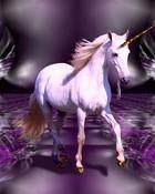 Wall unicorn-jpg