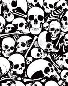 wall of skulls-.JPG