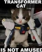 Transformers gone cute....? wallpaper 1
