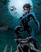 NightWing - Bats.jpg