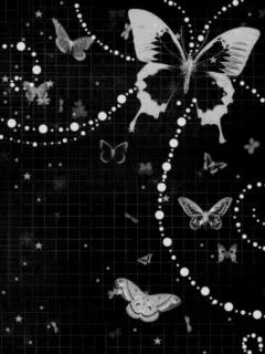 Free Butterfly-black n white.jpg phone wallpaper by twifranny