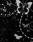 Butterfly-black n white.jpg wallpaper 1