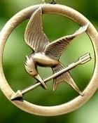 katniss's pin.jpg