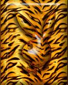 PLAYBOY animal HC 1.jpg
