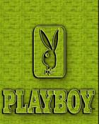 PLAYBOY HC 3.jpg
