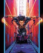 Ultimate Wolverine.jpg wallpaper 1