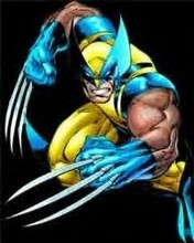 Free Wolverine 2.jpg phone wallpaper by mkximus