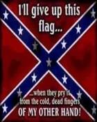 Rebel_Flag.jpg wallpaper 1