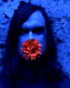 Bert-flower.jpg