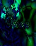 Dream 2.jpg wallpaper 1