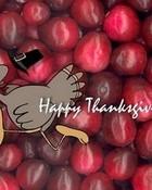 Thanksgiving Dash