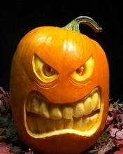 Free Pumpkin Carving 8 phone wallpaper by missjas