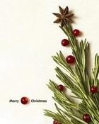 Christmas Tree wallpaper 1