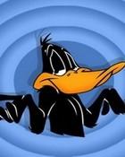 Daffy Duck wallpaper 1