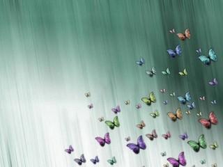 Free Butterflies phone wallpaper by missjas