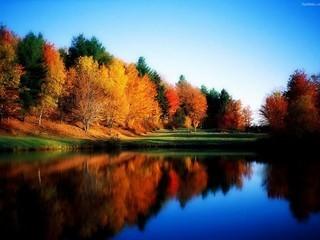 Free Autumn Splendor phone wallpaper by missjas