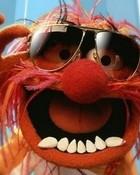 Muppets Animal