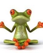 Meditating Frog wallpaper 1