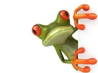 Free Peeking Frog phone wallpaper by missjas