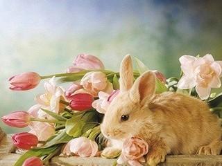 Free Happy Easter phone wallpaper by missjas