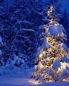 Blue Christmas wallpaper 1