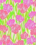 Lilly Pultizer, Floral Pink and Green