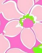 floral pink pultizer
