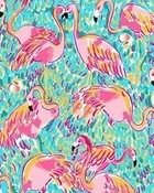 Lilly Pultizer, Flamingos