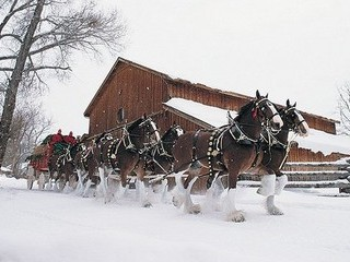 Free Clydesdale Christmas 2 phone wallpaper by missjas